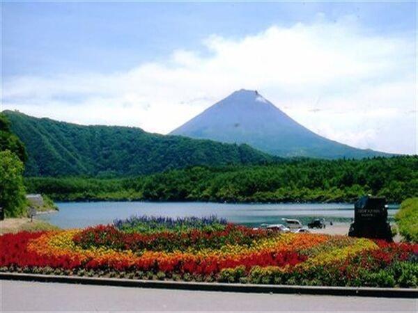 湖畔から望む富士山(景観一例)