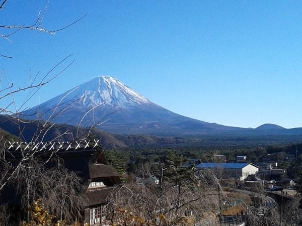 西湖いやしの里根場から望む富士山(景観一例)
