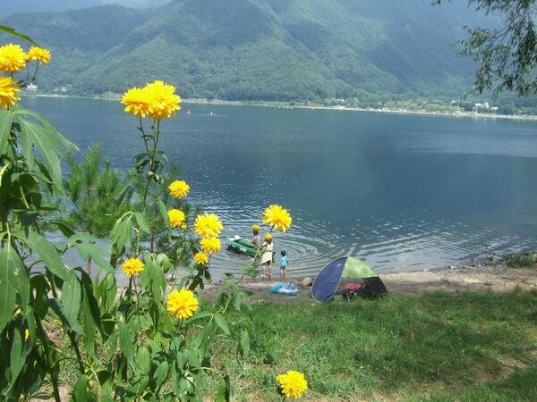 湖畔(景観一例)