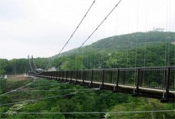 つつじ吊橋全貌