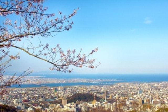 【桜・見ごろ】眉山