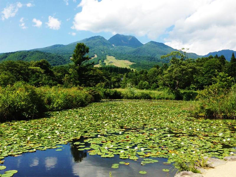 【赤倉温泉】妙高の霊泉を「温泉ソムリエ」と共に享受する