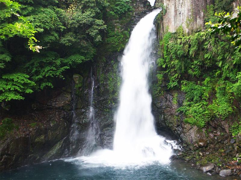 【河津温泉郷大滝温泉】森林浴に滝めぐりで体の中からリフレッシュ
