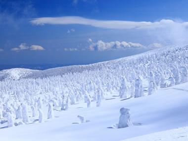 【蔵王温泉】見事な樹氷とかけ流しの名湯を存分に楽しもう