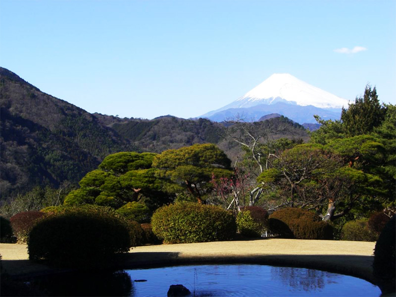 【大仁温泉】伊豆半島の大自然に抱かれた富士見の湯