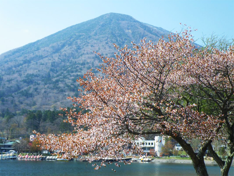 【中禅寺温泉】歴史と自然の神秘が包む奥日光の高原リゾート