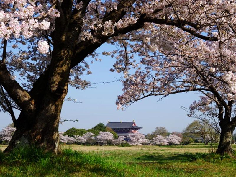 【宝来温泉】悠久の歴史をたどる大和路の拠点