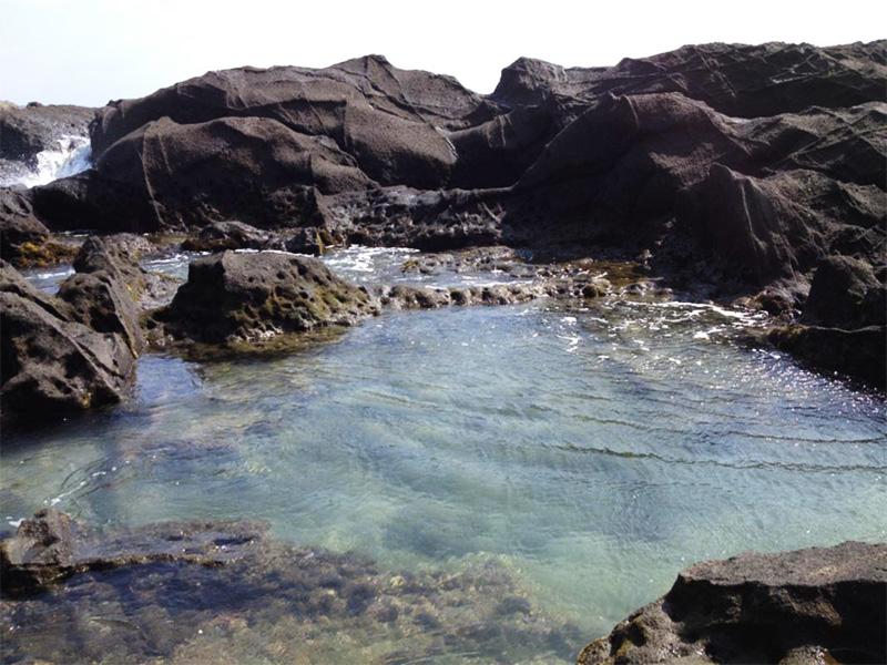 【三浦マホロバ温泉】三浦半島に湧く天然温泉と三崎港の幸でリゾート満喫