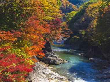 【水上温泉】美しい渓谷のせせらぎと美しい紅葉名所もある