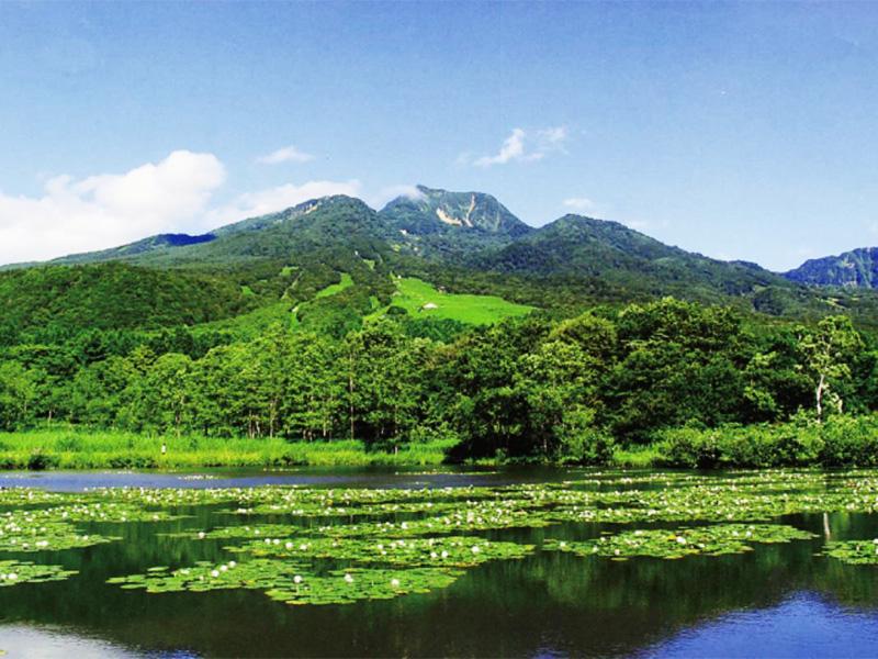 【妙高高原池の平温泉】閑静で自然豊かな高原リゾートに湧く温泉