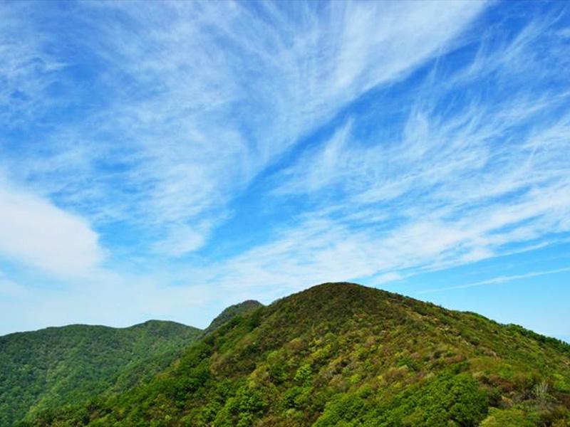 【天然中伊豆温泉】自然豊かな天城山の麓に湧く中伊豆の温泉
