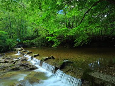 【鶯宿温泉】個性豊かな湯宿が立ち並ぶ里山の温泉郷
