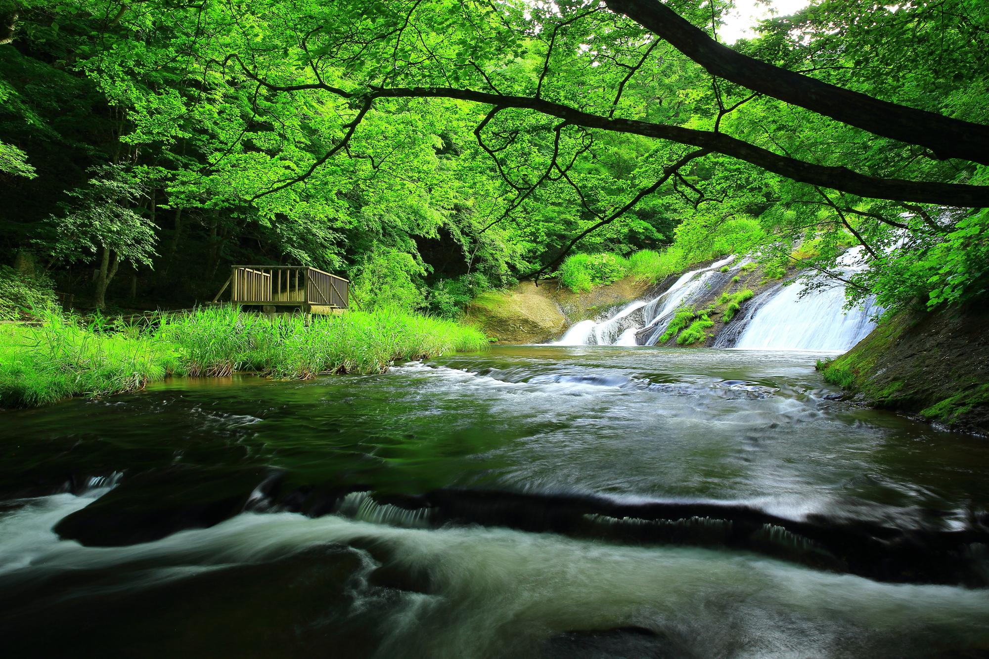 【大沢温泉】 綺麗な花々や遊びがいっぱいのレジャー型温泉地