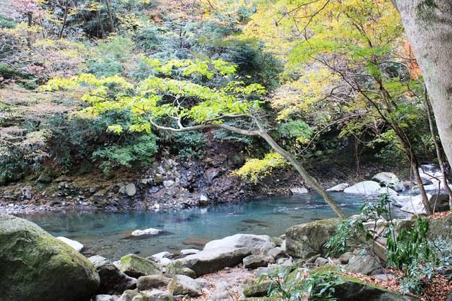 【木賀温泉】平安時代からの歴史を誇る、箱根屈指の古湯温泉