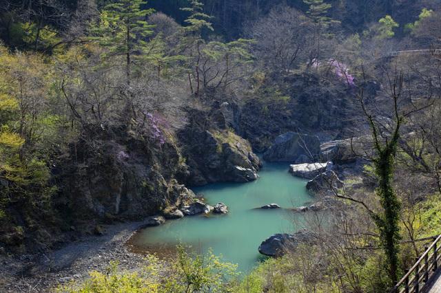 【八塩温泉】約200万年前の化石海水が湧き出る温泉