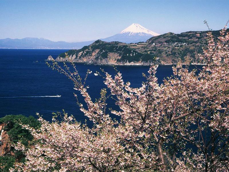 【宇久須温泉】山と海に囲まれた隠れ家的温泉地