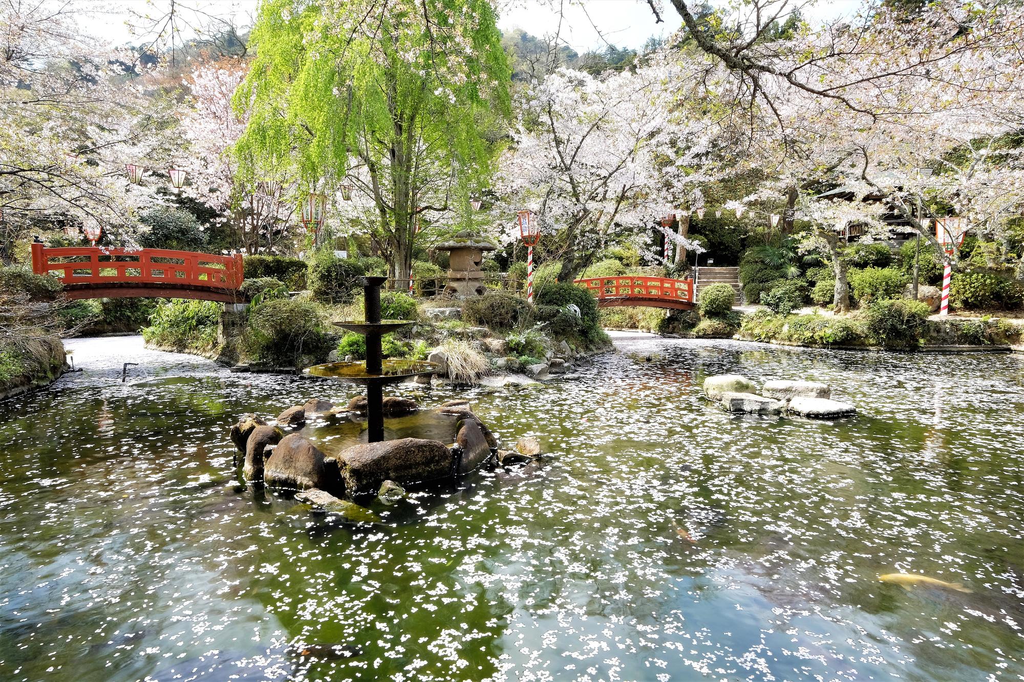 【関金温泉】日本国内第2位のラドン放射能を有する温泉地