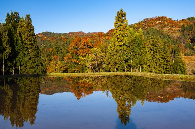 【松之山温泉】日本三大薬湯の一つ、湯治客が支持する薬効を実感