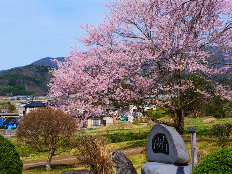 【久米川温泉】自然の恵みをいただく信州の隠れた名湯
