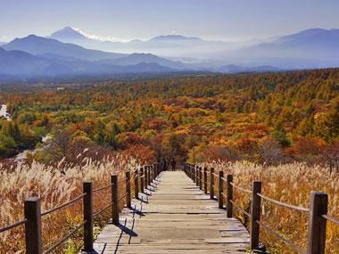 【甲斐大泉温泉】紅葉も楽しめる、森林に囲まれた高原リゾートに湧く温泉