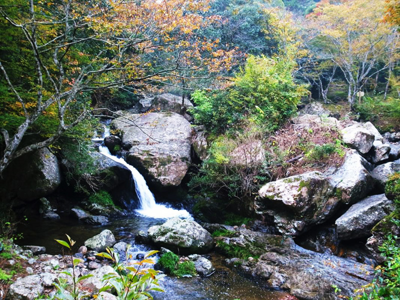 【るり渓温泉】瑠璃の清流きらめく渓谷の温泉