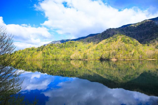 【丸沼温泉】尾瀬や奥日光の拠点に最適な、ニジマス泳ぐ湖畔の湯