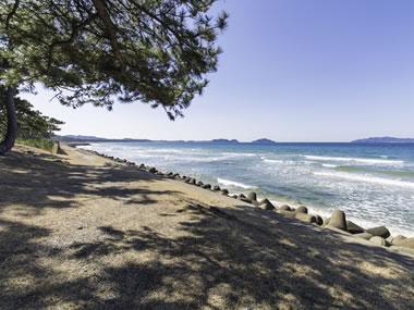 【玄海さつき温泉】白砂青松のビーチと大海原が美しい温泉地