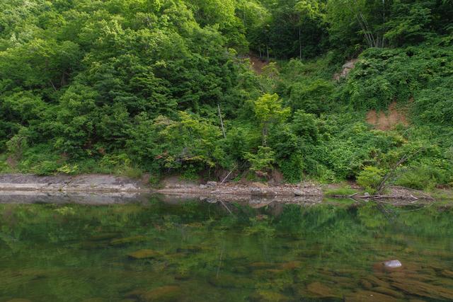 【小金湯温泉】樹齢700年の桂の木が見守る小さな温泉地