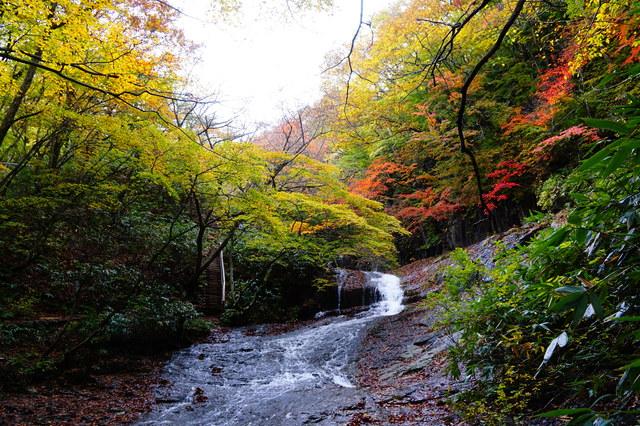 【野地温泉】鬼面山の北西麓から湧き出す東北の美湯
