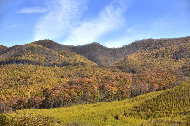【浅間高原温泉】浅間山の裾野に広がる高原に湧き出る温泉地