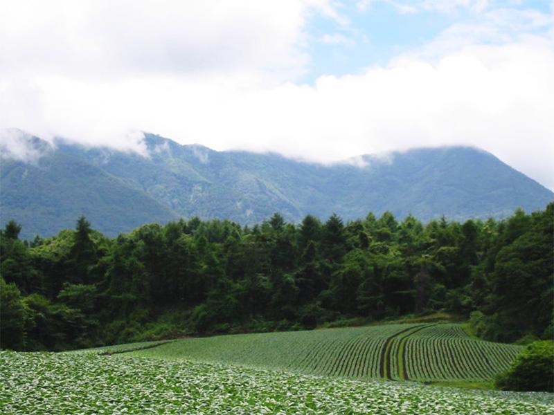 【奥嬬恋温泉】スローライフを満喫できる高原の湯