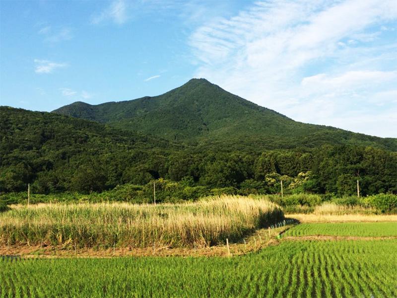 【筑波山温泉】関東平野を一望できる名峰・筑波山に湧く絶景温泉