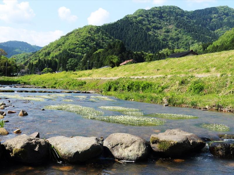 【七釜温泉】毎分約720Lもの湧出量を誇る温泉と松葉ガニの町