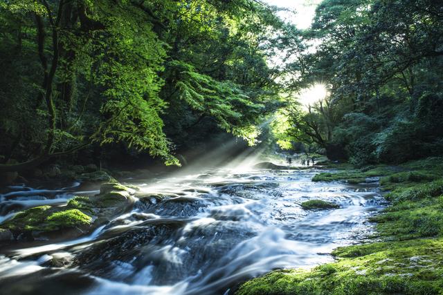 【菊池渓谷温泉】歴史ある街と自然豊かな渓谷に囲まれた名湯