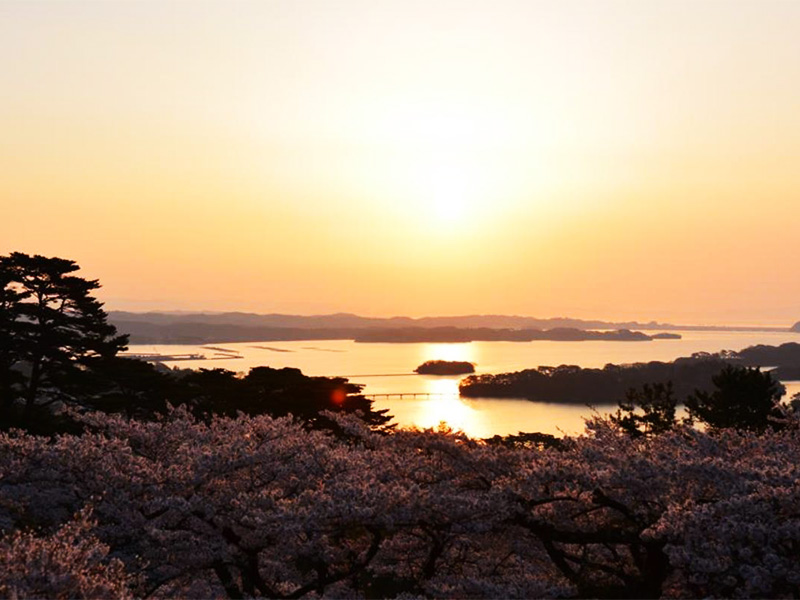 【松島温泉】日本三景「松島」の絶景が一望できる温泉