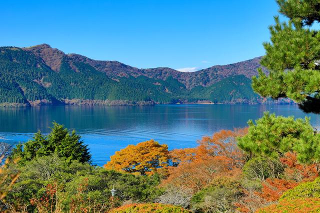 【元箱根温泉】芦ノ湖畔の高台から望む雄大な景色を楽しめる温泉