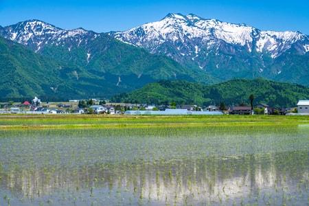 大沢山温泉の温泉・旅行ガイド(2021年版)|ゆこゆこ