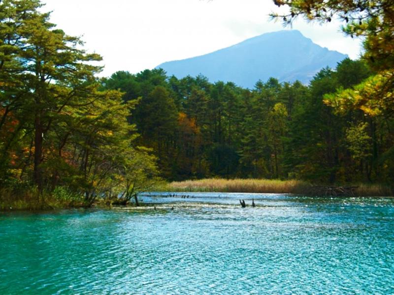 【五色温泉】水と緑の楽園で出会う野趣あふれる名湯
