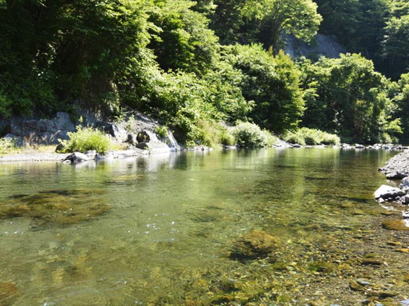 【向屋温泉】奥深い自然に抱かれた秘湯の雰囲気漂う湯