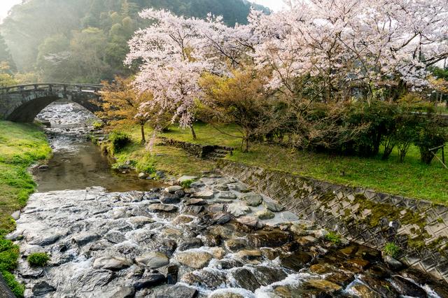 【秋月温泉】歴史ある「小京都」の奥に佇む、庭園の中の一軒宿