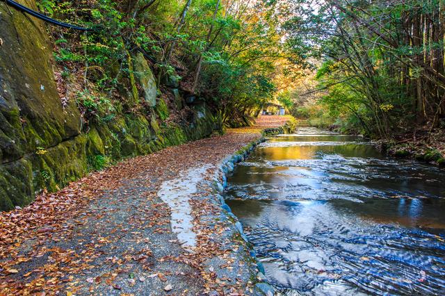 """【宇佐温泉】""""西の天橋立""""の美しい入り江に湧くいで湯"""