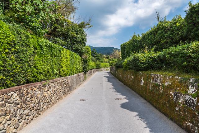 【南さつま・知覧温泉】小京都で巡る歴史と文化、優しい温泉