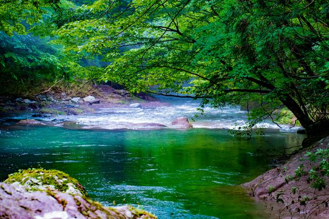 【三内峡温泉】プールとジムで健康づくりもできるブナ林の中の宿
