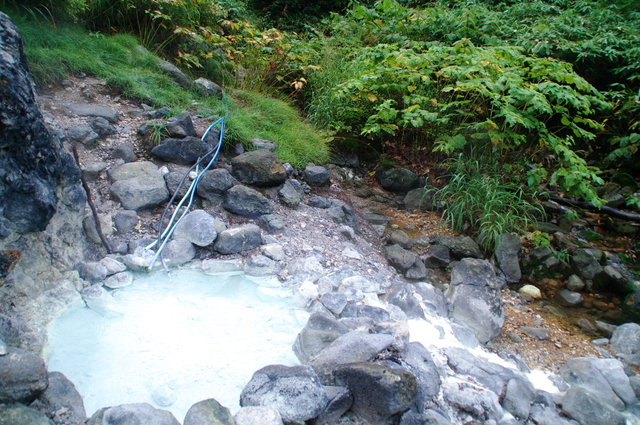【一本松温泉】山中に湧いた湯だまりに浸かる野湯