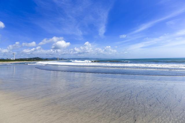 【千倉元湯温泉】一年中春のような海辺で、海の幸を堪能して