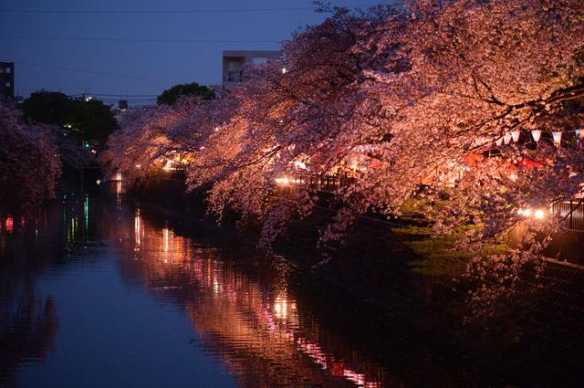 【中里温泉】横浜で100年以上続いてきた一軒宿の温泉