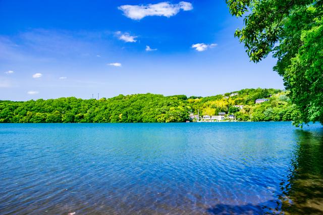 【小室温泉】海も山も満喫できる!伊豆高原のリゾート地