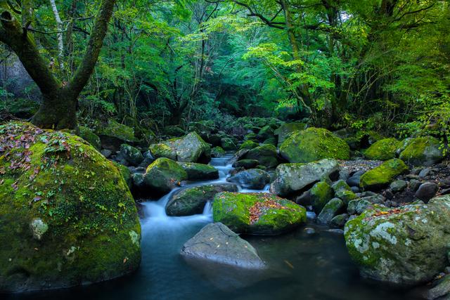 【鈴ヶ谷温泉】豆腐店が営む、やわらかい肌触りの温泉