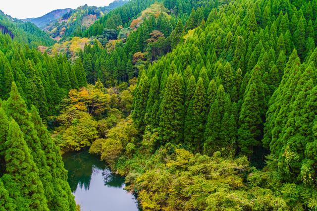 【守護陣温泉】小国の山麓にたたずむ天然100%の秘湯