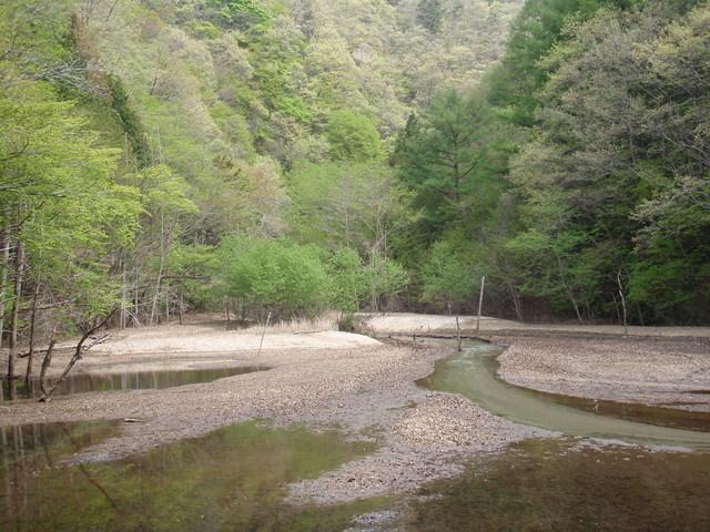 【天目山温泉】渓流の自然に触れ、季節によって変化する湯につかる